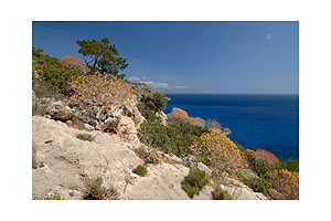 Coast of Mediterranean Sea