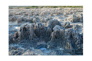 Bizarre Limestone rocks